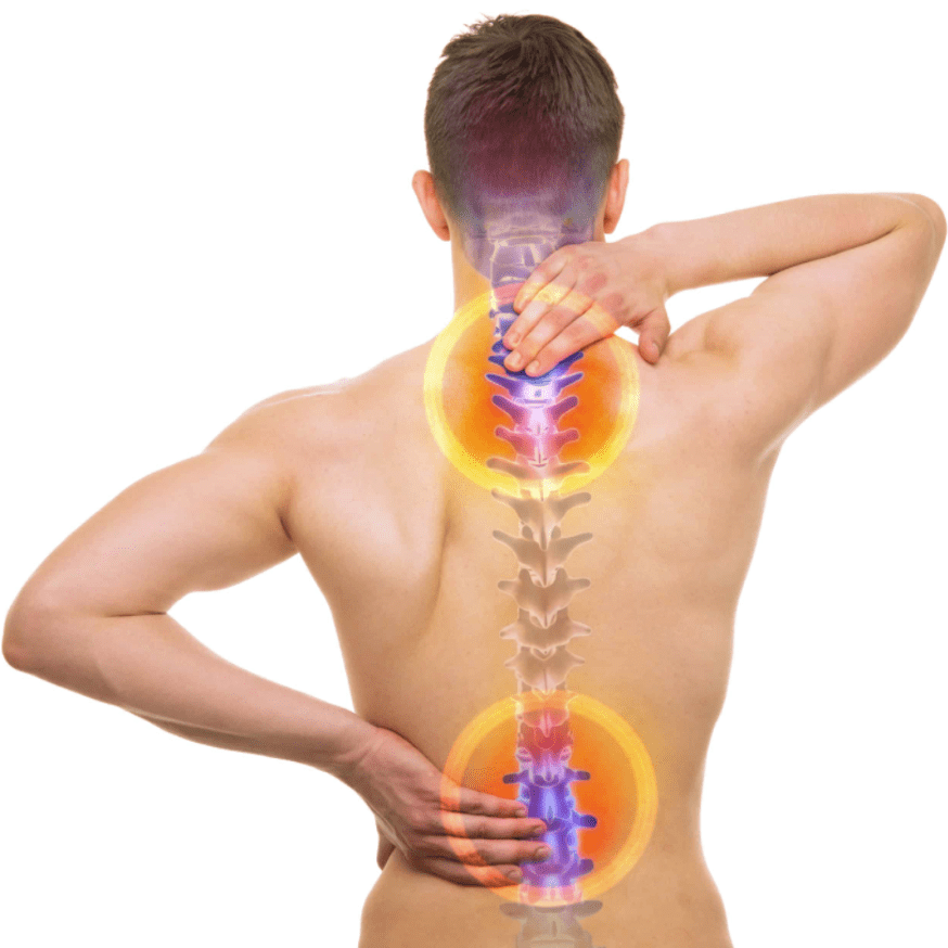 Spine Heath And Wellness Favicon